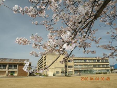 長池小学校   八尾市